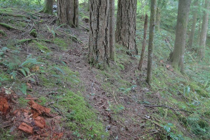 Left is the original Russ Jolley trail tread.