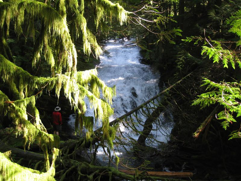 Apron Falls <FONT SIZE=1>© Chiyoko Meacham</FONT>