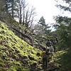 Prindle Trail. <FONT SIZE=1>© Chiyoko Meacham</FONT>
