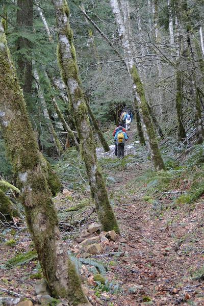 Hillsberry Trail.