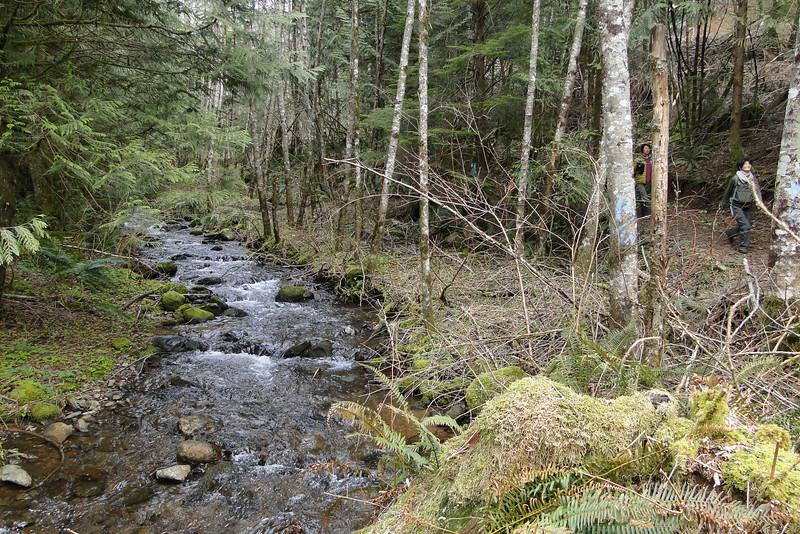 Canyon Creek.