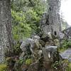 Ruckel Ridge Trail