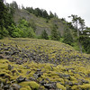 The talus slope you need to climb to reach Ruckel Ridge