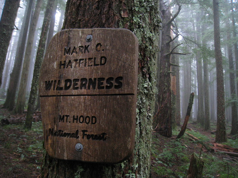 The Benson Wilderness Boundary. <FONT SIZE=1>© Chiyoko Meacham</FONT>