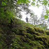 Rudolph Spur Trail. <FONT SIZE=1>© Chiyoko Meacham</FONT>