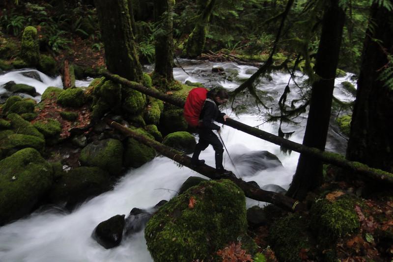 Horsetail Creek Crossing.