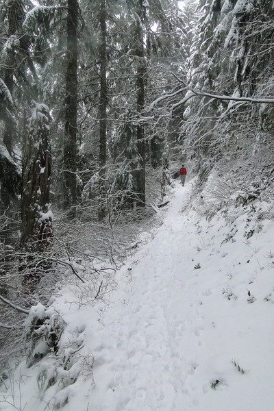 Heading down the Nesmith Point Trail.