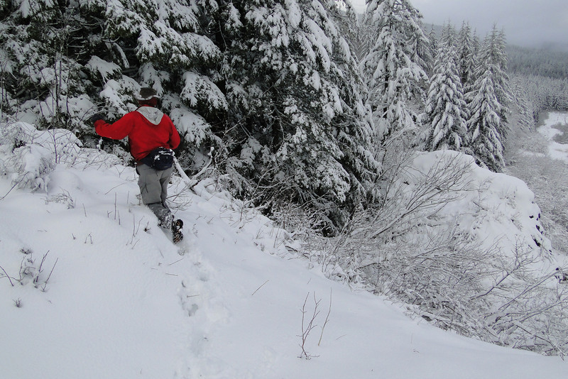 The quick way to Cynthia Falls!