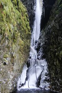 Cynthia Falls