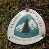 A PCT trail marker at the junction with the old logging road. Often a rare find on the PCT these days this section of the trail was well stocked with them at every trail junction.
