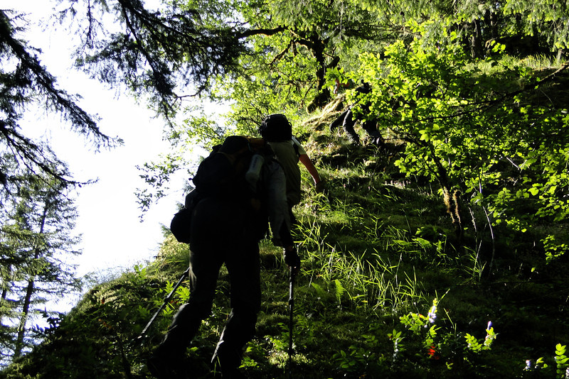 Up the ridge we go!