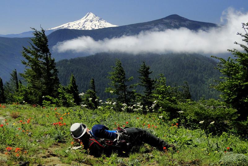 Augspurger Ridge Trail