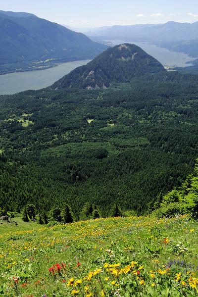 Dog Mt. Trail