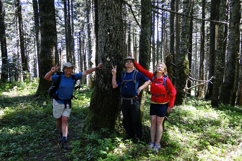 Peak #2<br /> Augspurger Mt.