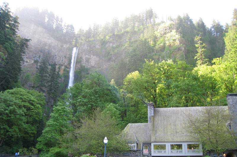 We set out from the Multnomah Falls Gorge TR400 Trailhead. <FONT SIZE=1>© Chiyoko Meacham</FONT>