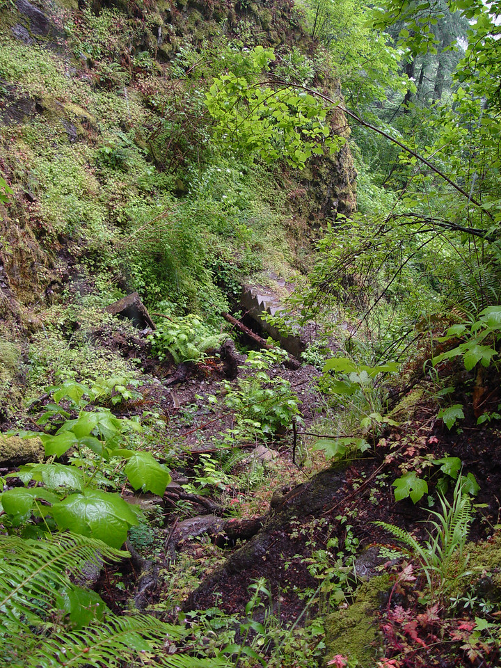 The worst part: Since it was raining so heavily we didn't take any photos until we reached the top of the old stairway (we didn't want to hang around in there in case something decided to move!) We scrambled up this gully, you can see the remains of the stairway below.