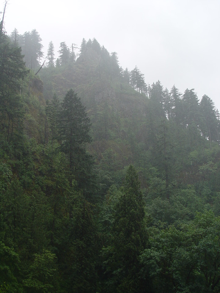 A final look back at the Perdition Trail View Point from the Multnomah Falls parking lot.