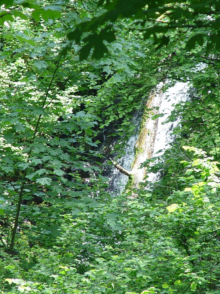 From a Coopey Falls spur trail view point & with a 5x telephoto lens you get this view of Upper Coopey Falls which has no official trail to it.