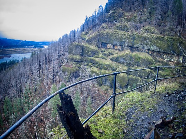 Elowah and Upper McCord Creek Falls.