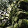 A large dry stone wall just above the 400 trail & next to Waespe Creek.