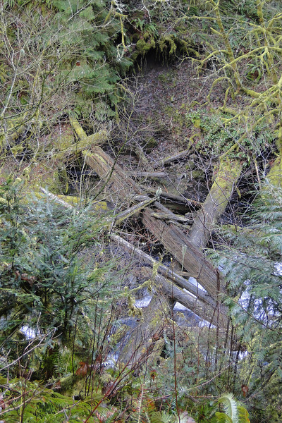 Wahclella Falls Trail.<br /> The old footbridge that washed away.