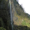 Wahclella Falls Trail.