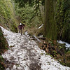 Heading up the Wahkeena Trail past the Lemmon Lookout