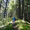 Pascal<br /> Starvation Ridge Trail