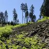 Starvation Ridge Trail