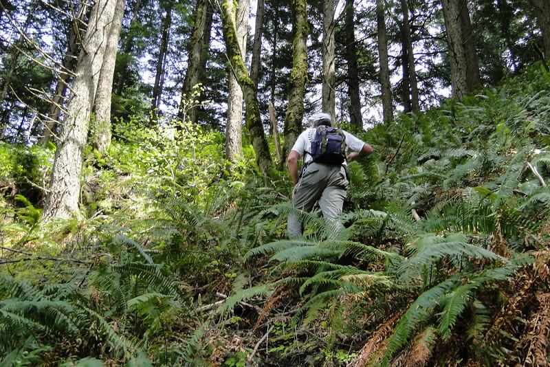 Climbing up to the saddle on Waespe Ridge.