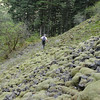 The Franklin - Oneonta descent route.<br /> The Rock Field.