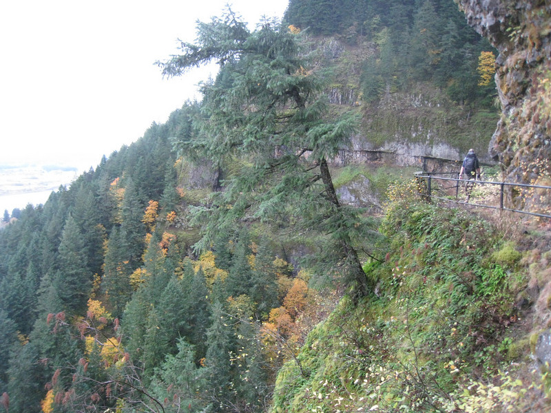 We set out from the John B. Yeon State Park & took the trail to Upper McCord Falls.