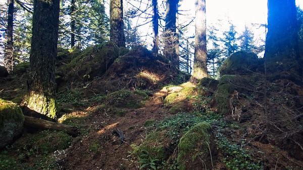 Multnomah - Wahkeena - Devils Loop