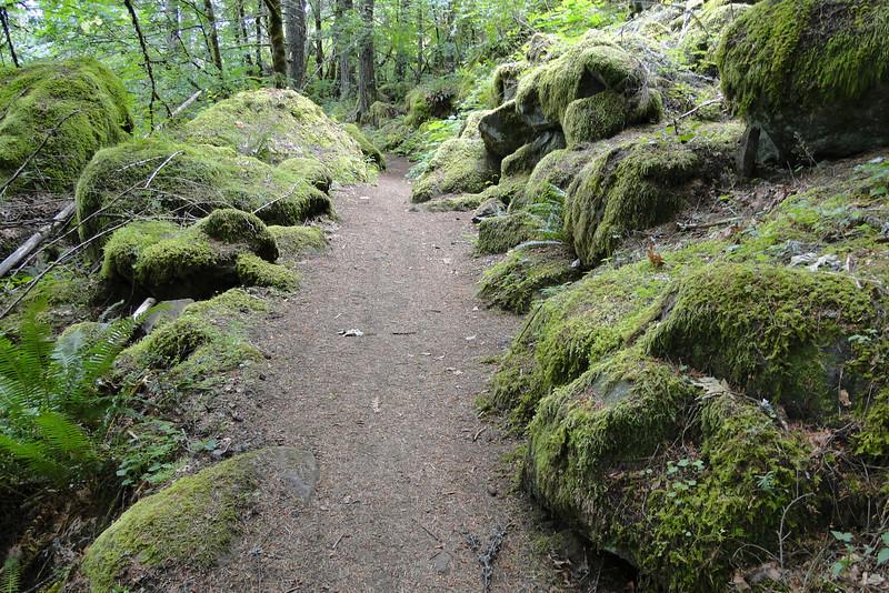 Herman Creek Trail