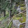 Green Point Ridge