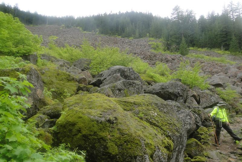 Gorton Creek Trail<br /> The Giant Rockfield.