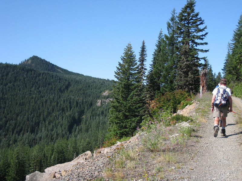 Hiking along the old Wahtum Lake Road to Indian Mountain <FONT SIZE=1>© Chiyoko Meacham</FONT>