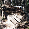 The old fire lookout outhouse has seen better days. The last person to use it left the seat up :^)