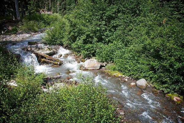 Newton Creek Trail