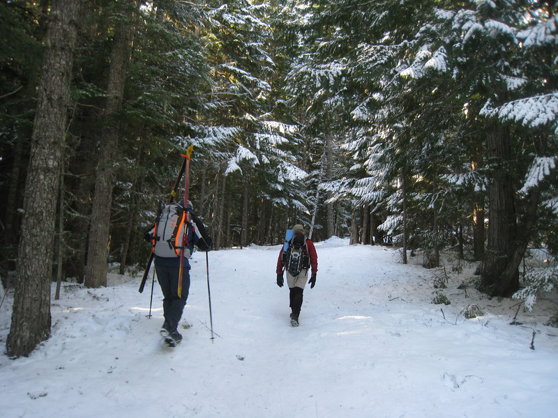 Heading up the Tilly Jane Trail. <FONT SIZE=1>© Chiyoko Meacham</FONT>