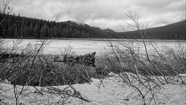 Lost Lake © Chiyoko Meacham