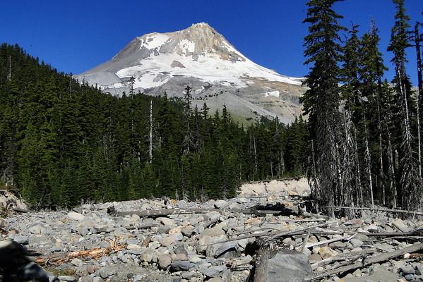 The Newton Creek Trail