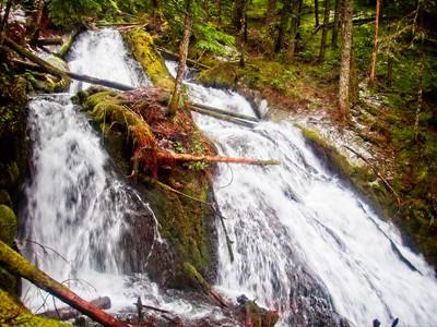Little Zigzag Falls