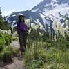 <I>Xerophyllum tenax</I> Bear Grass