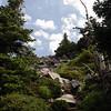 McNeil Ridge trail