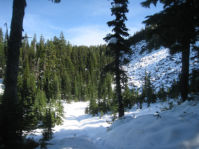 Timberline Trail Approaching the Ponds © Chiyoko Meacham