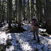 Back on the North side of Bald Mountain we ran into snow again.