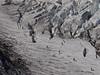 01 Elliot Glacier Hikers