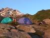 10 Paradise Camp