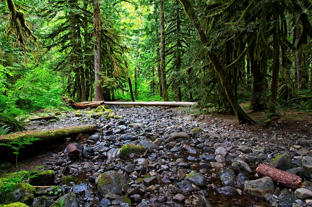 The Old Salmon River Trail.